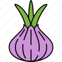eat, food, onion, spring, vegetable icon