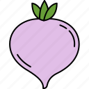food, healthy, turnip, vegetable icon