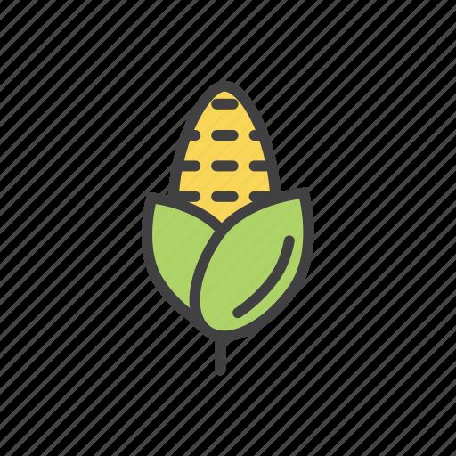 corn, popcorn, vegetable icon