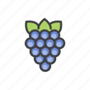 fruits, grapes, health, vitamins icon