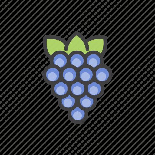 fruits, grapes, health, vitamins icon