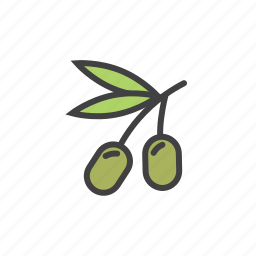green, health, leaf, olives icon