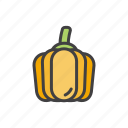 health, orange, punmpkin, vegetable icon