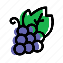 berry, eat, food, fruit, grape icon