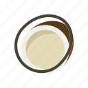 coconut, food, meal, plant icon