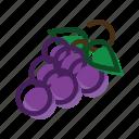 grape, food, meal, plant
