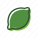 food, lime, meal, plant, sour icon