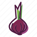 food, meal, onion, plant icon