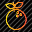fresh, fruit, healthy, orange