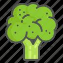 broccoli, vegetables, vegetable, organic