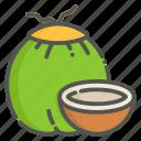 coconut, fruit, tropical, summer