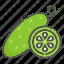 cucumber, vegetable, vegetarian, organic