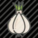 garlic, cooking, vegetable, ingredient