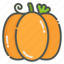 pumpkin, halloween, vegetable, organic