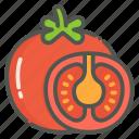 tomato, vegetable, organic, vegetarian