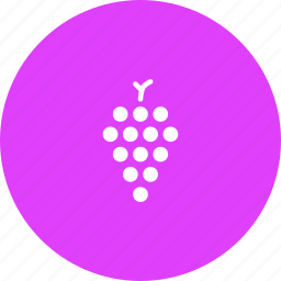 fruit, grapes, wine icon