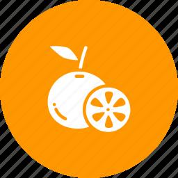 citrus, fruit, fruits, healthy, lemon, lime, orange icon