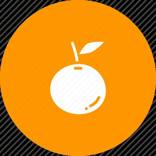 fruit, healthy, orange icon