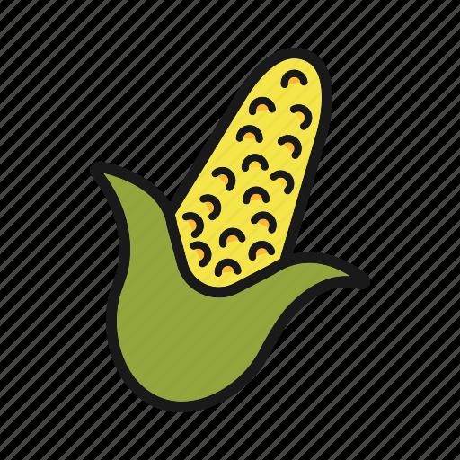 corn, maize, vegetable icon