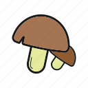 boletus, champignon, mushrooms, porcini icon