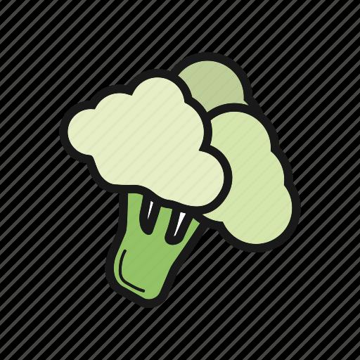 broccoli, cabbage, cauliflower, vegetable icon