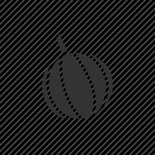 garlic, vegetable icon