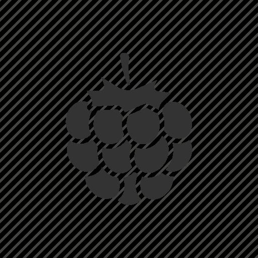 Berry, blackberry, bramble, dewberry, raspberry icon - Download on Iconfinder