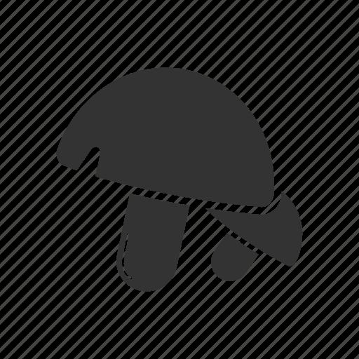 boletus, champignon, mushrooms, porcini icon
