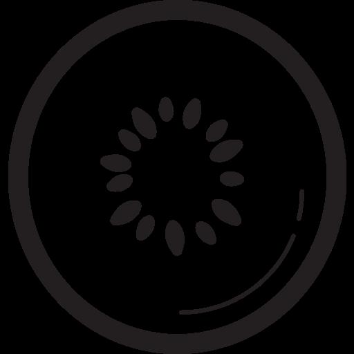 fruit, fruits, kiwi icon