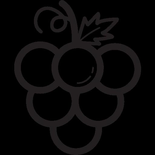fruit, fruits, grape icon