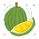 durian, fruit, fruits icon