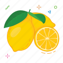 fruit, fruits, lemon icon