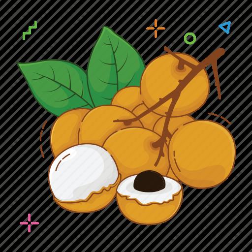fruit, fruits, longan icon