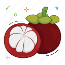 fruit, fruits, mangosteen icon