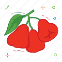 fruit, fruits, water apple icon