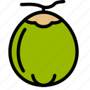 coconut, fresh, fruit, fruits, healthy, tropical icon
