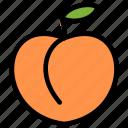 fresh, fruit, fruits, healthy, organic, peach, tropical icon