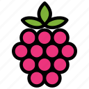 fresh, fruit, fruits, healthy, raspberry, tropical icon