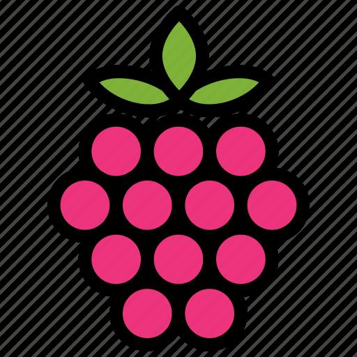 fresh, fruit, fruits, healthy, raspberry, tropical icon