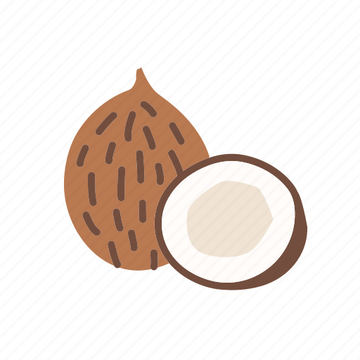 coco, coconut, food, fruit, organic, tropical icon