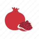 farm, food, fruit, nature, organic, pomegranate icon