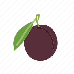 farm, food, fruit, nature, organic, plum icon