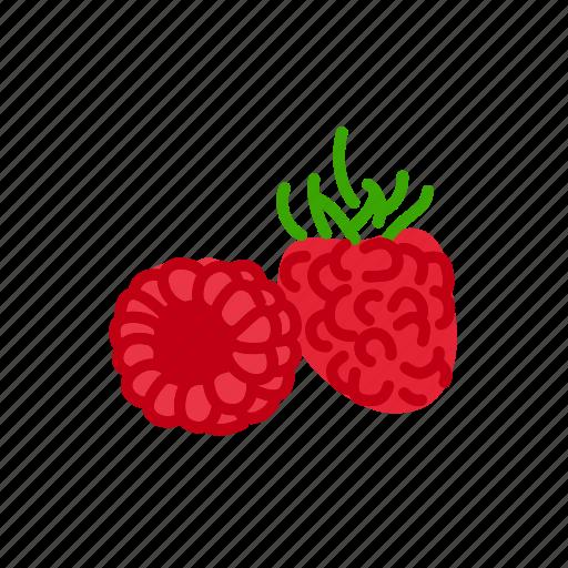 farm, food, fruit, nature, organic, raspberry icon