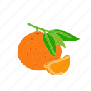 farm, food, fruit, mandarin, nature, organic icon