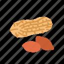 farm, food, fruit, nature, organic, peanut icon