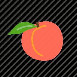 farm, food, fruit, nature, organic, peach icon