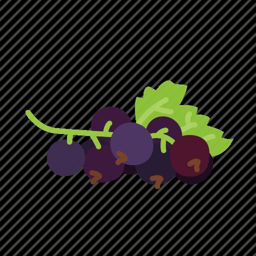 currant, farm, food, fruit, nature, organic icon