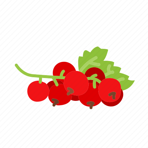 currant, farm, food, fruit, nature, organic icon