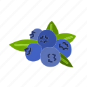blueberry, farm, food, fruit, nature, organic icon