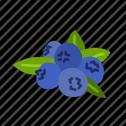 blueberry, farm, food, fruit, nature, organic icon